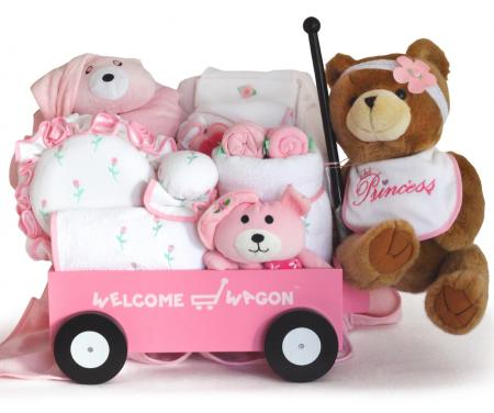 b09d7bde269d Deluxe Welcome Wagon Baby Gift (Boy or Girl available)