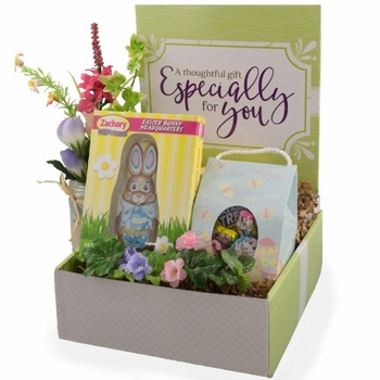 Easter Bunny Care Package