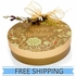Happy Holiday Ornament Box with Coconut Cashew Crunch