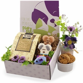 Pet Lover Care Package (Dog, Cat, Owner)