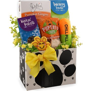 Gourmet dog gifts and dog gift baskets from bisket baskets and more sick as a dog gift basket negle Choice Image