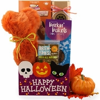 Thinking of You Halloween Dog Gift