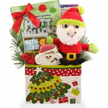 Treats with Santa Christmas Dog Gift