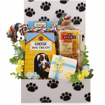 Two Fun Dog and Owner Care Package - SOLD OUT