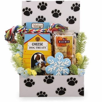 Two Fun Dog and Owner Christmas Care Package-SOLD OUT