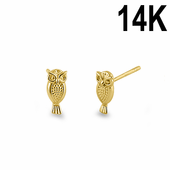 Solid 14K Yellow Gold Small Owl Stud Earrings
