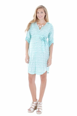 SOLD OUT Everly Grey Hudson Maternity Shirt Dress