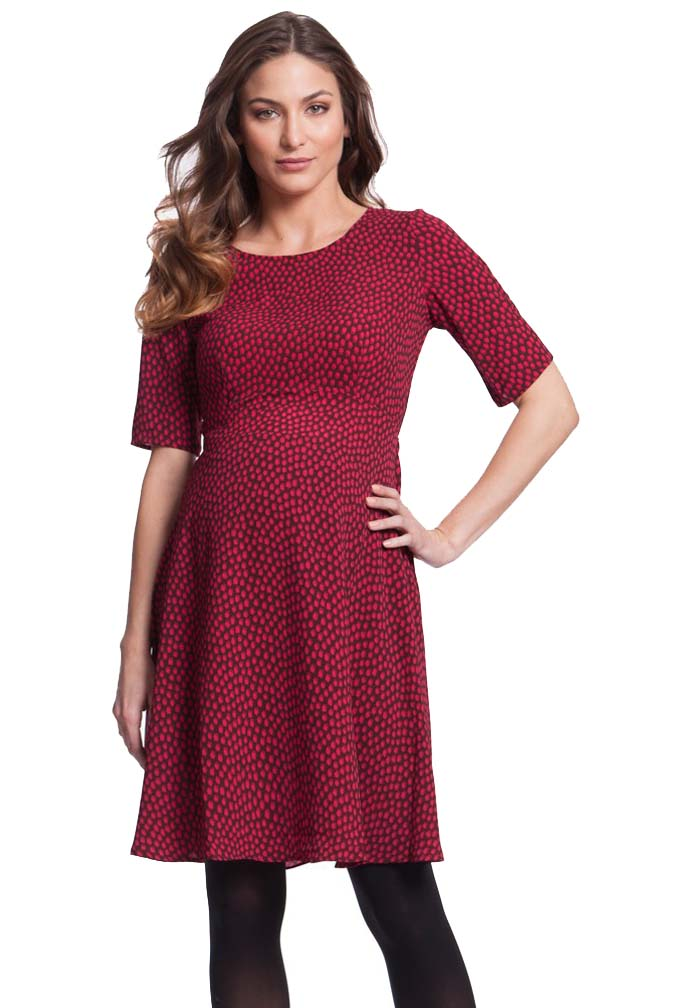Fit and Flare Maternity Dress
