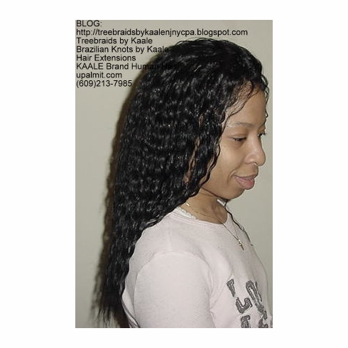 BRAIDING HAIR- NJ Human Blend Hair, Wet and Wavy, and Straight Hair 18""