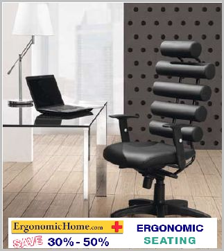 Ergonomic Home Office Chair.