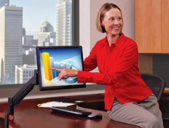 Innovative Office Products 7flex Budget Monitor Arm</font></b>