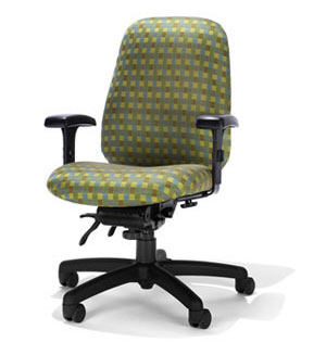Ergonomic Home Petite Medium Back Chair RFM A