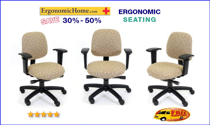 ERGONOMIC HOME PETITE MEDIUM BACK CHAIR #RFM 5845 25A: Customize This  Ergonomic