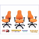 RFM CARMEL HIGH BACK MANAGERS CHAIR W/ADJUSTABLE ARMS. FREE SHIPPING. <b><font color=green>40% OFF. READ MORE...</font></b>