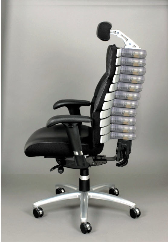 Verte Lumbar Support Chair By Rfm 22011 Adjustable Back