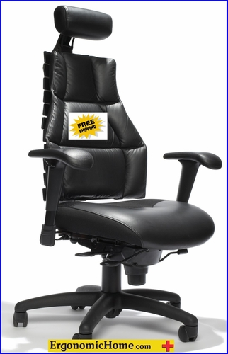 Verte Adjustable Ergonomic Chair. Comfort All The Way To The Bone! <font color=#c60>Read More...</font>