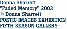 "Donna Sharrett ""Faded Memory"" 2003 © Donna Sharrett POETIC IMAGES EXHIBITION FIFTH SEASON GALLERY"