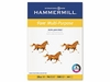 20 lb. Fore Multi-Purpose A4 Paper by Hammermill® - Pre-Punched (Case)