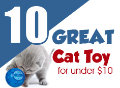 10 Great Cat Toys Under $10