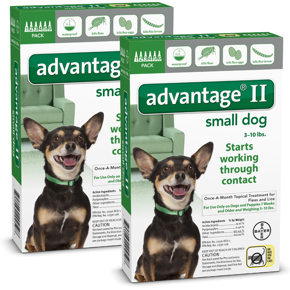 12 MONTH Advantage II Flea Control Small Dog (for Dogs under 10 lbs.)