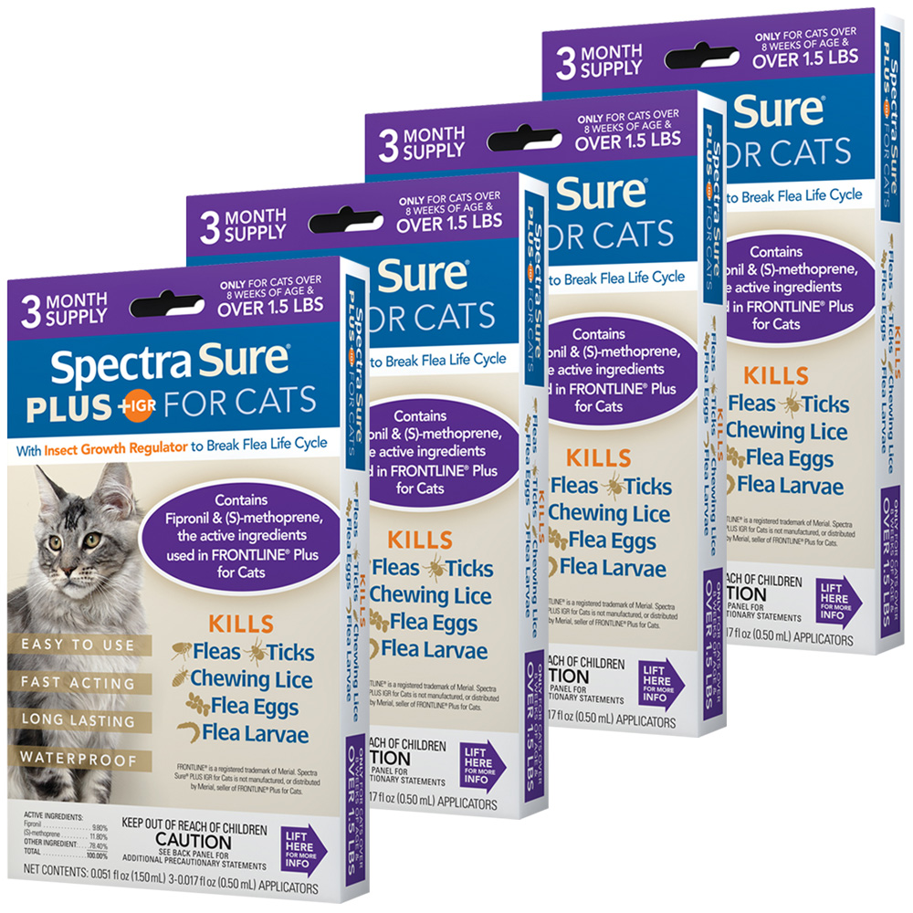 12 MONTH Spectra Sure Plus for Cats of All Weights