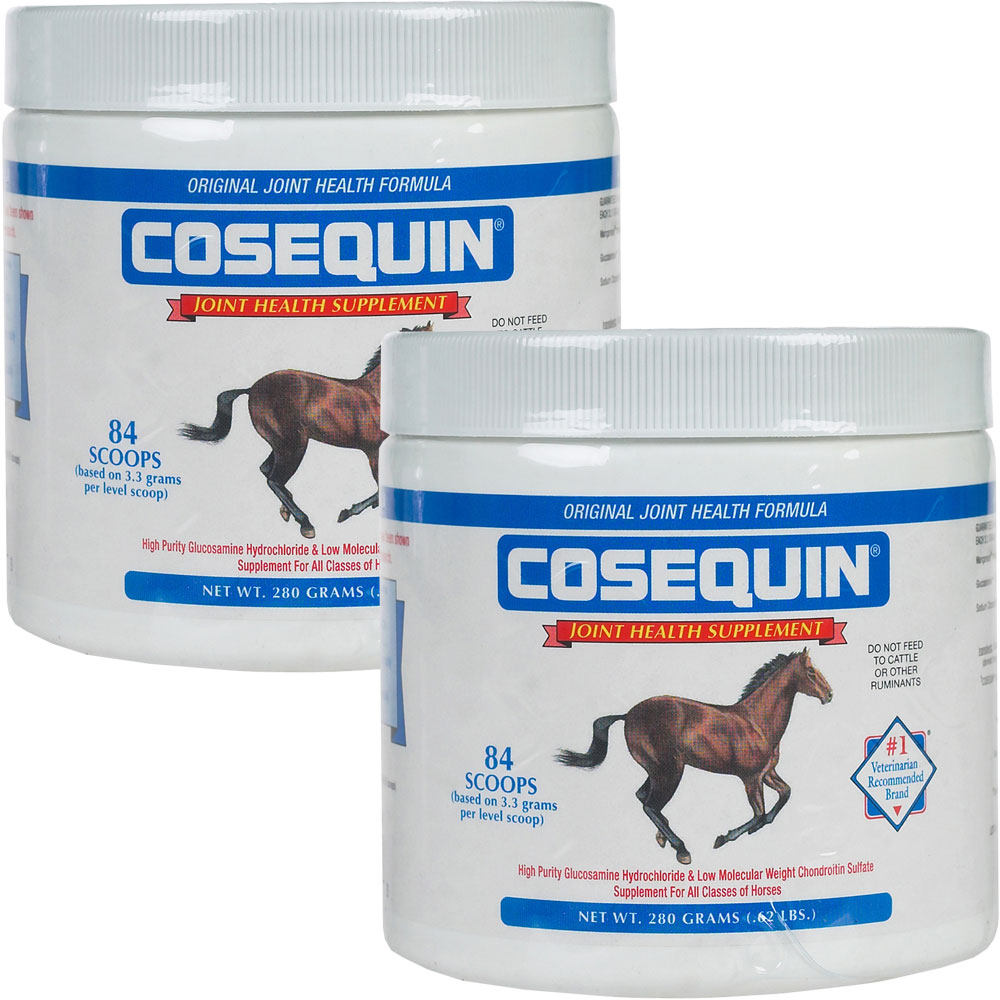 2 pack cosequin equine powder concentrate 560 gm. Black Bedroom Furniture Sets. Home Design Ideas
