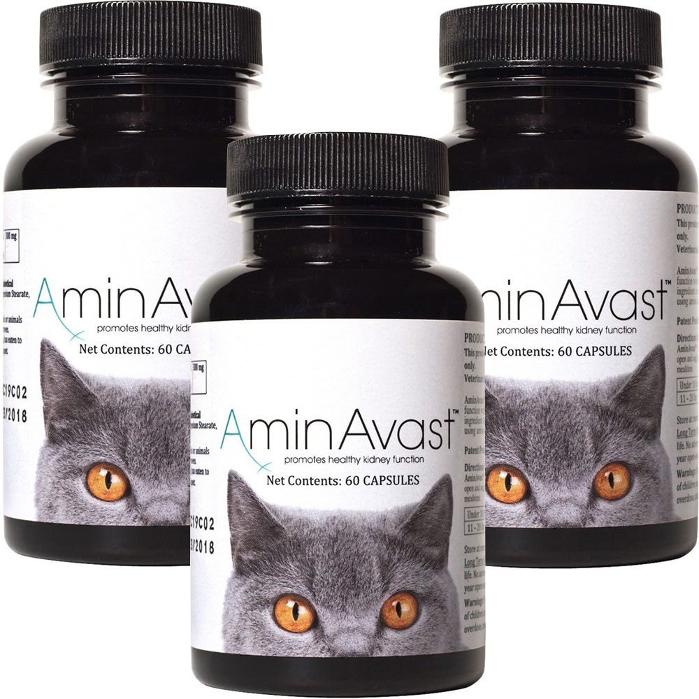 3-PACK AminAvast Kidney Support for Cats (180 capsules)
