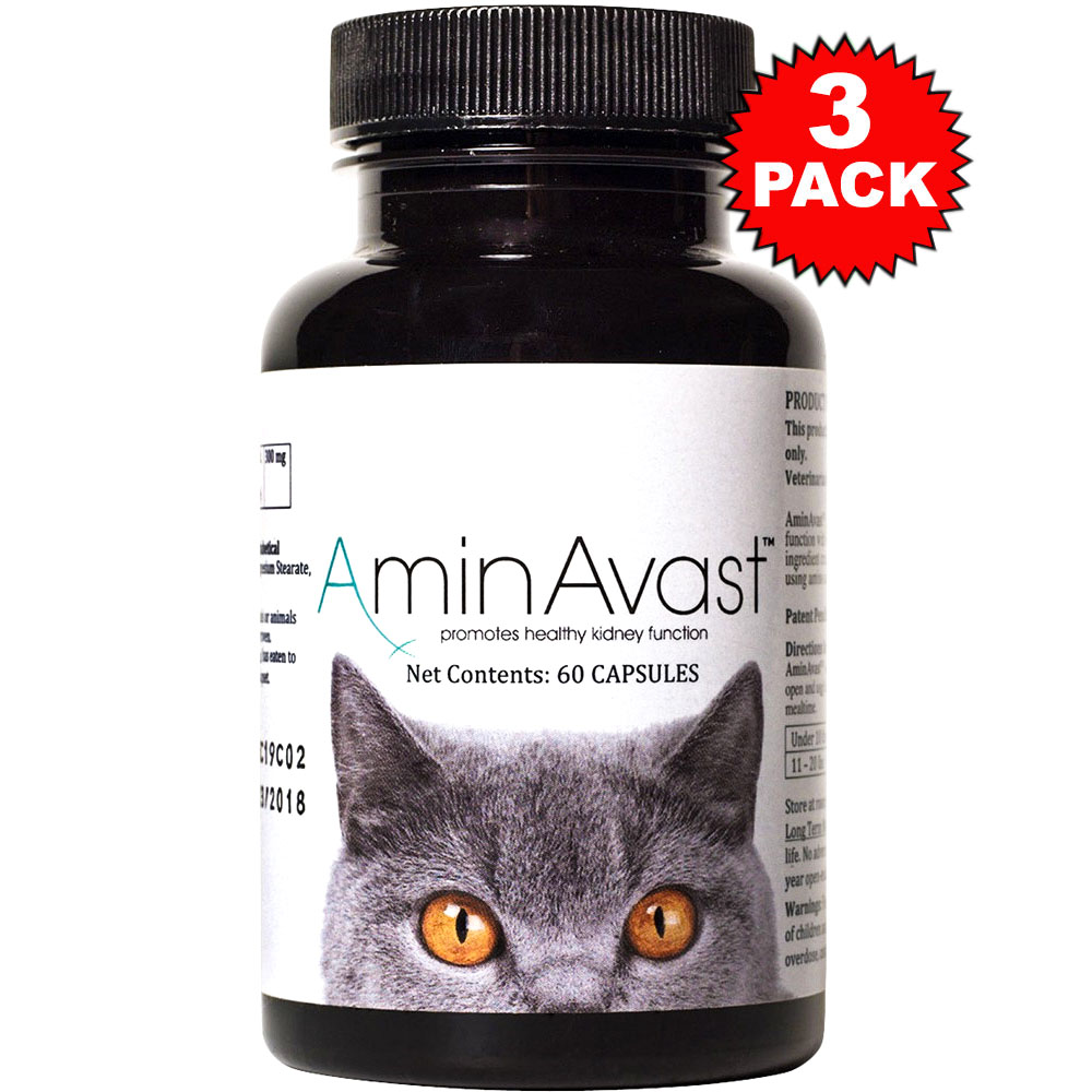 3-PACK AminAvast® Kidney Support for Cats (180 capsules)