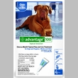 4 MONTH Advantage Flea Control Blue:  For Dogs over 55 lbs.