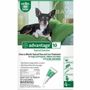 4 MONTH Advantage Green: For Dogs under 10 lbs