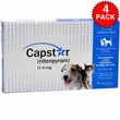 4 PACK CAPSTAR Blue for Dogs or Cats 2-25 lbs (24 tablets)