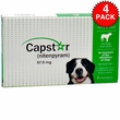 Capstar Blue For Cats Side Effects