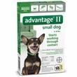 6 MONTH Advantage II Flea Control for Small Dogs (under 10 lbs)