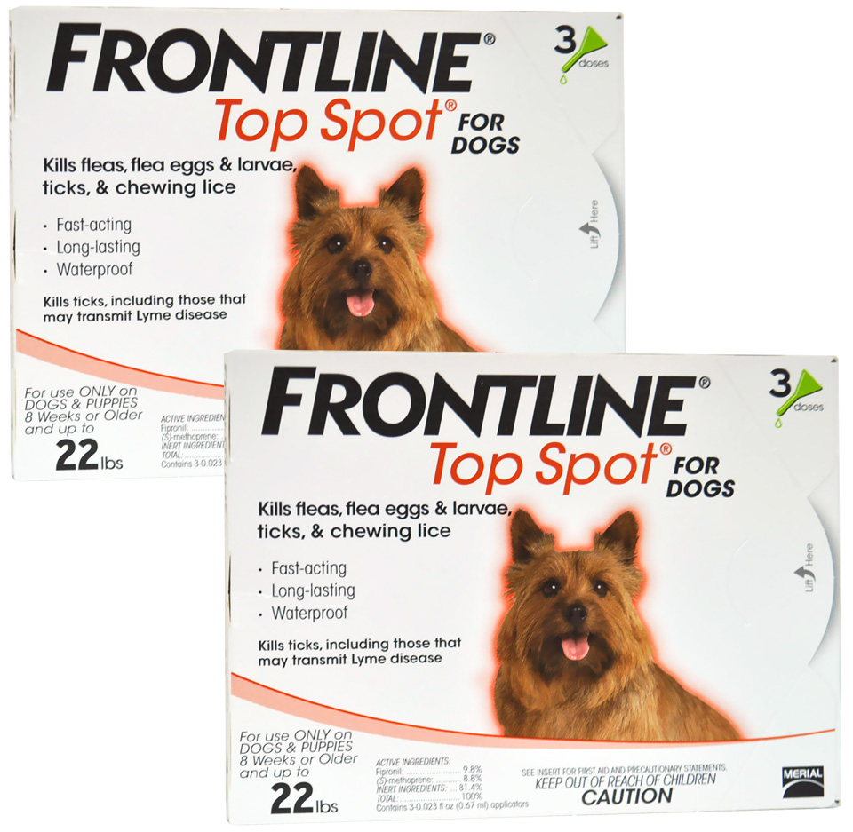 6 MONTH Frontline Top Spot Orange: For Dogs up to 22 lbs.