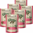 6-PACK Greenies Feline Dental Treats - Savory Salmon Flavor (15 oz)