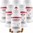 6-PACK LaxaCat Hairball Remedy (360 Soft Chews)
