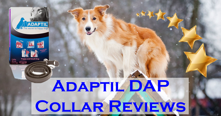 Adaptil DAP Collar Reviews
