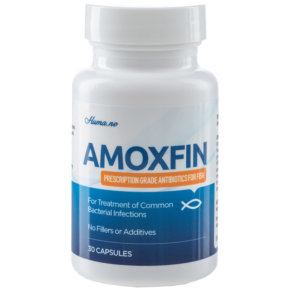 Amoxfin Fish Antibiotic (30 Capsules)