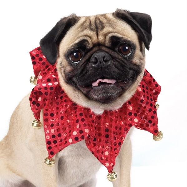 Aria Red Shimmer Scrunchy Collar For Dogs  13-16 Inch