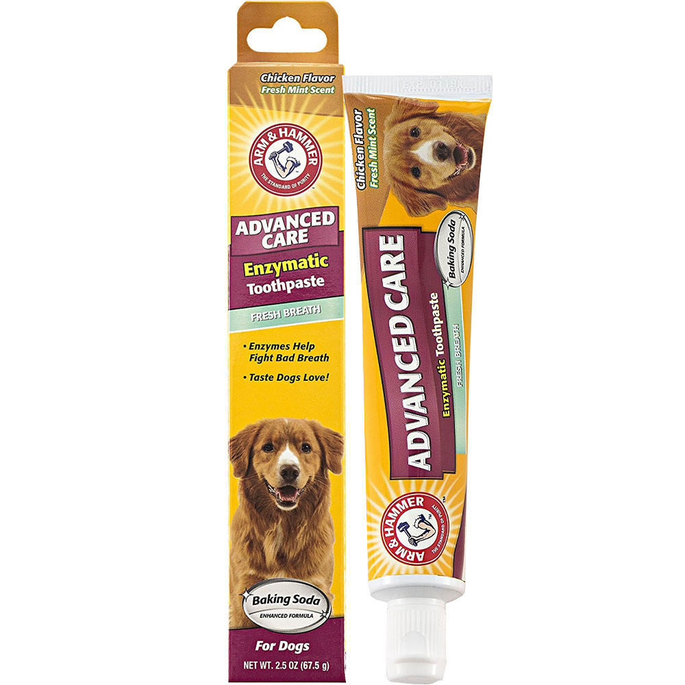 Arm & Hammer Enzymatic Toothpaste for Dogs - Chicken Flavor (2.5 oz)