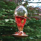 Avant Garden Bird Feeders