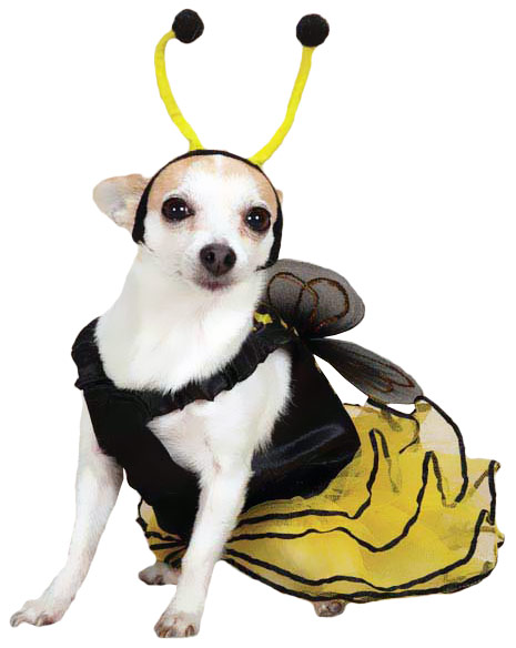 Bee Mine Dog Costume Yellow - XLARGE