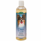 Bio-Groom Protein Lanolin Conditioning Shampoo (12 oz)