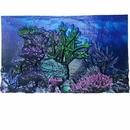 "BioBubble 3D Background Coral Reef 10 Gallons (20"" x 10"")"