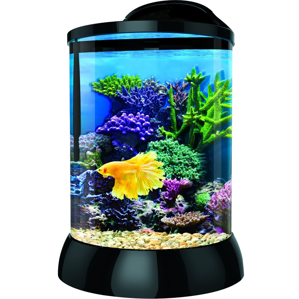 "BioBubble 3D Background for AquaTerra 1 - Gallon Black (7.5"" x 7.5"" x 10"")"