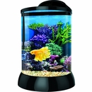 "BioBubble 3D Background for AquaTerra 2 - Gallon Black (9"" x 9"" x 12"")"