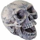 "BioBubble Decorative Human Skull - Small (2"" x 1"" x 2"")"