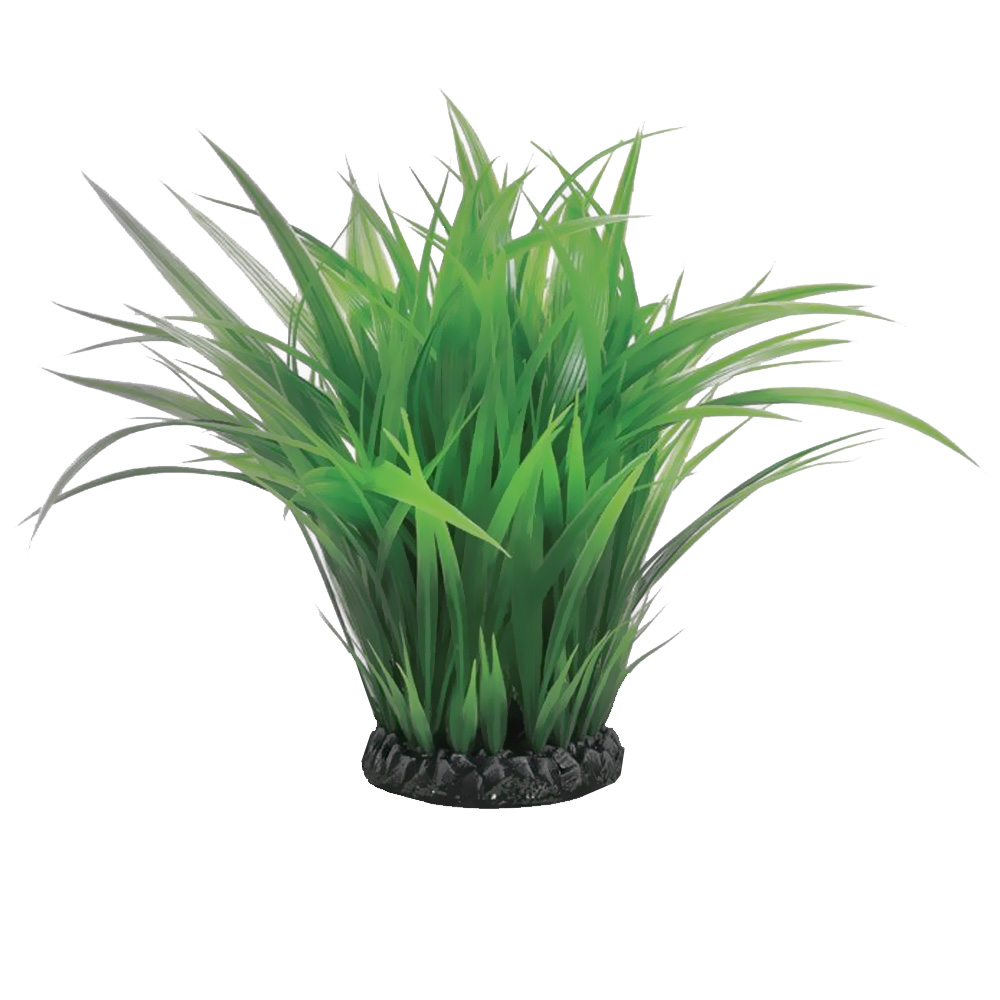 Biorb easy plant aquatic grass ring small for Easy aquatic plants