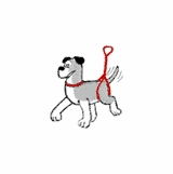 Bottom's Up Leash - RED