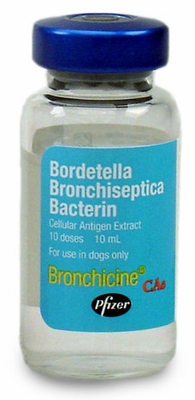 Bronchicine CAe, 10ds vial